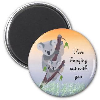 Imán australiano lindo del oso de koala