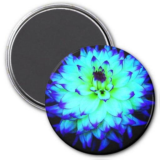 Imán azul de la flor