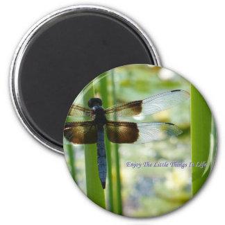 Imán azul de la libélula