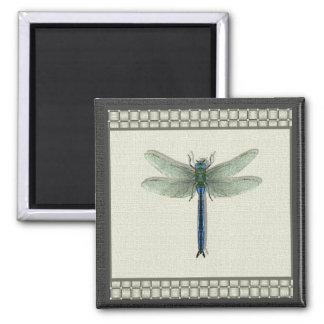 Imán azul de la libélula (cuadrado)