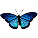 Imán azul de la mariposa esculturas fotográficas
