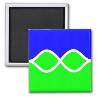 Imán azulverde 022
