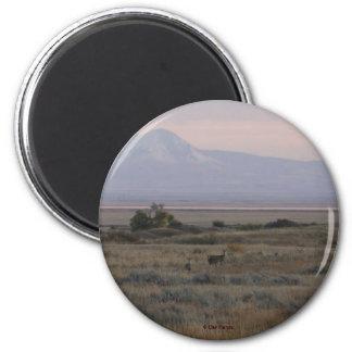 Imán Blanco-atado D0010 de las colinas de la hierb