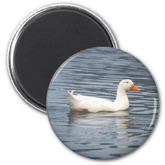 Imán blanco de la fotografía del pato
