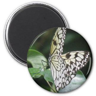 Imán blanco y negro de la mariposa