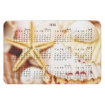 Imán bonito de 2014 Seashells del calendario