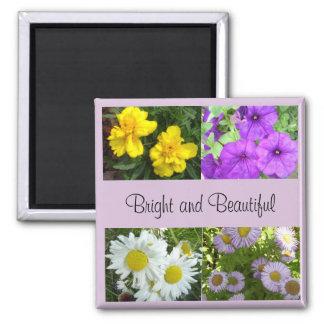 Imán brillante y hermoso del jardín