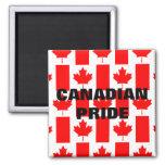 Imán canadiense de la bandera del modelo del orgul