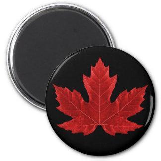 Imán canadiense rojo de la hoja de arce