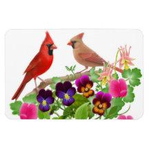 Imán cardinal septentrional del premio de los pája