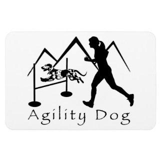 Imán Catahoula del perro de la agilidad