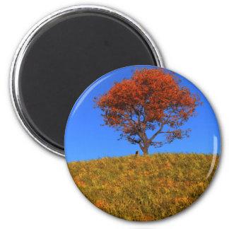 Imán claro del día del otoño