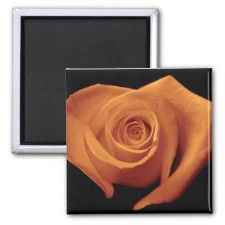 Imán color de rosa anaranjado