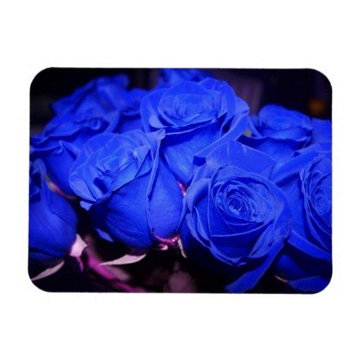 Imán color de rosa azul