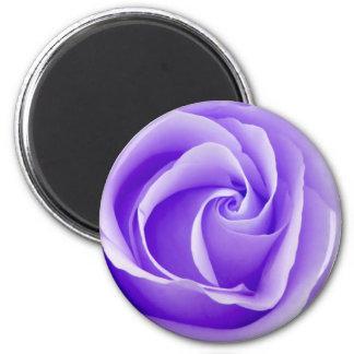 Imán color de rosa púrpura