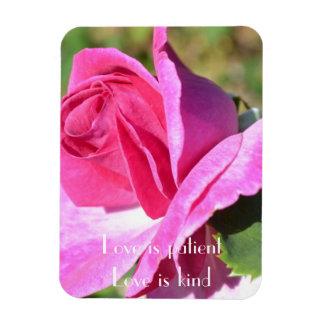 Imán color de rosa rosado de octubre