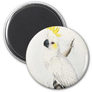 Imán con cresta amarillo del Cockatoo
