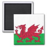 Imán con la bandera de País de Gales