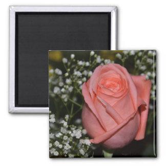 Imán coralino Rose-005