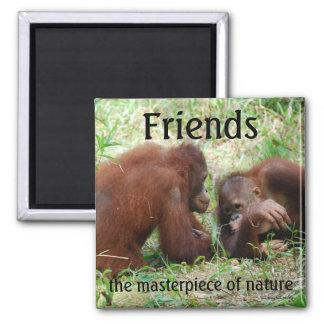 Imán cuadrado de los amigos