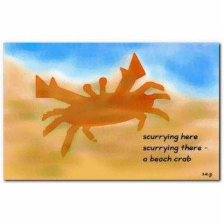 Imán de acrílico durable del cangrejo de la playa escultura fotografica