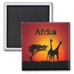 Imán de África