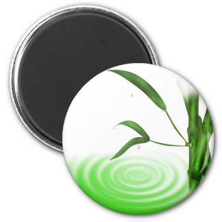 Imán de bambú de la planta de la ondulación del ag