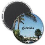 Imán de Bermudas
