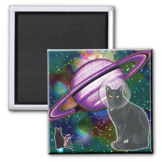 Imán de Cosmo del Espacio-Gato