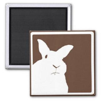 Imán de desaprobación del conejo de Brown