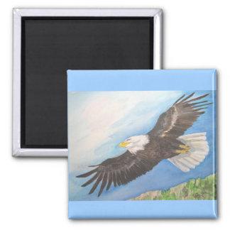 Imán de Eagle calvo en vuelo