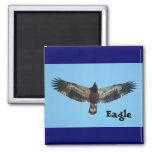 Imán de Eagle del vuelo