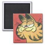Imán de Garfield del vintage