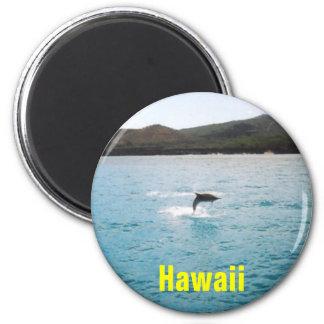 Imán de Hawaii