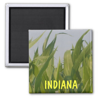 Imán de Indiana
