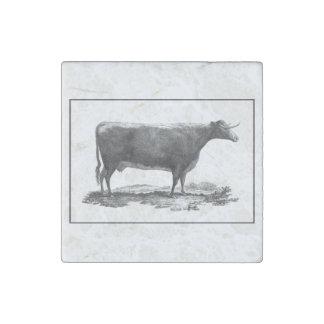 Imán de la aguafuerte de la vaca del vintage imán de piedra