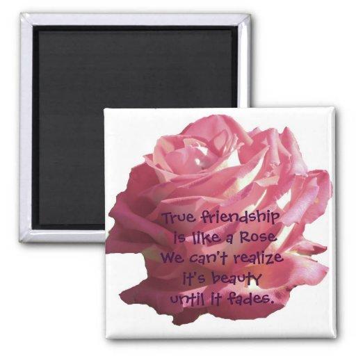 Imán de la amistad