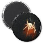 Imán de la araña