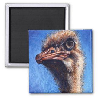 Imán de la avestruz de Fugley