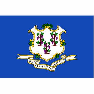 Imán de la bandera de Connecticut cortado Imán Fotoescultura