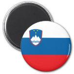 Imán de la bandera de Eslovenia