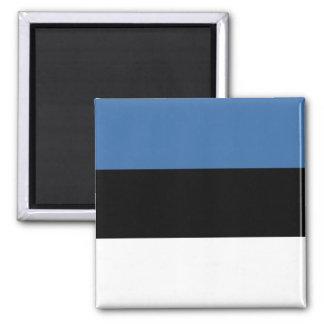 Imán de la bandera de Estonia