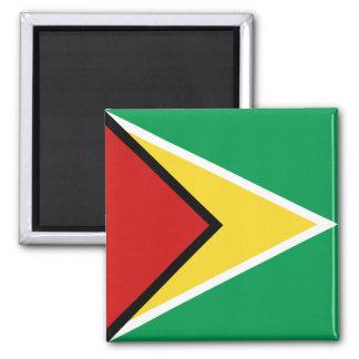 Imán de la bandera de Guyana