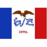 Imán de la bandera de Iowa cortado Escultura Fotográfica