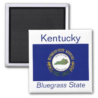 Imán de la bandera de Kentucky