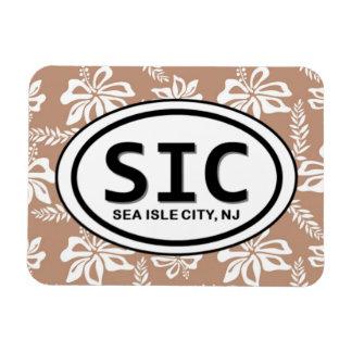 Imán de la ciudad NJ Brown de la isla del mar de S