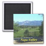 Imán de la cocina de Napa Valley