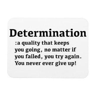 Imán de la determinación