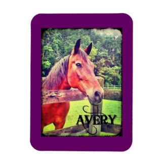 Imán de la edición de lujo de Avery