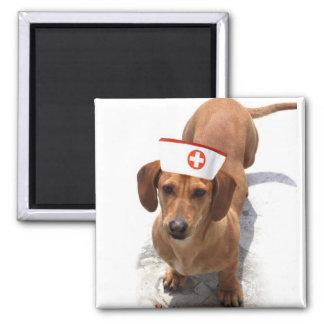Imán de la enfermera del Dachshund
